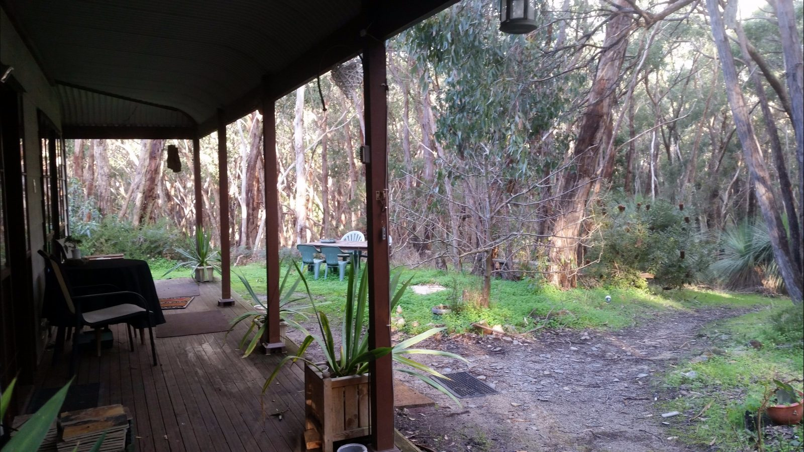 Deck View Kuri