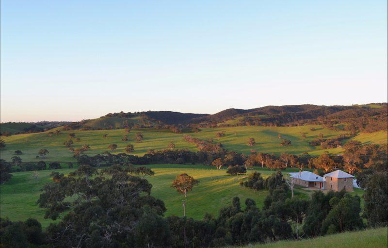 Views of Lapito House