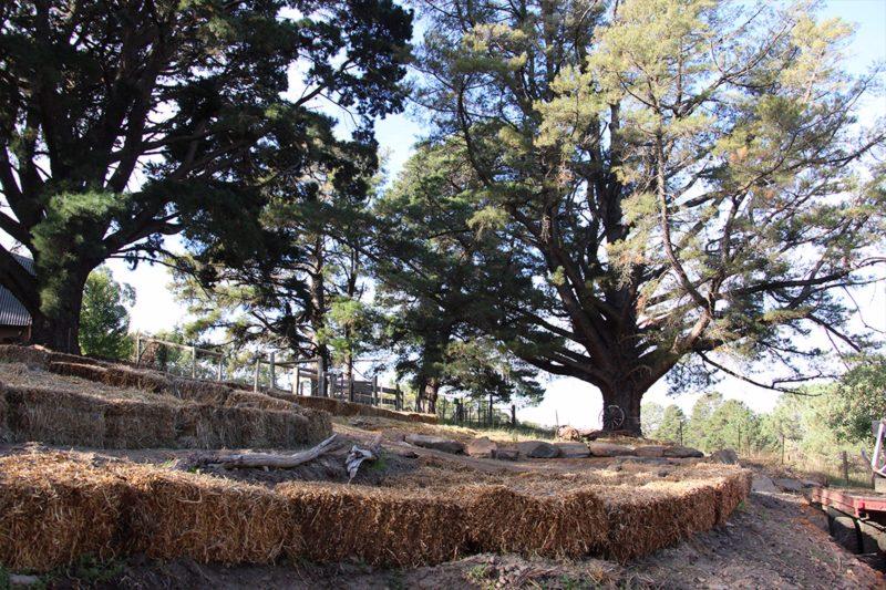 Longwoodretreat Adelaide Hills Accomodation