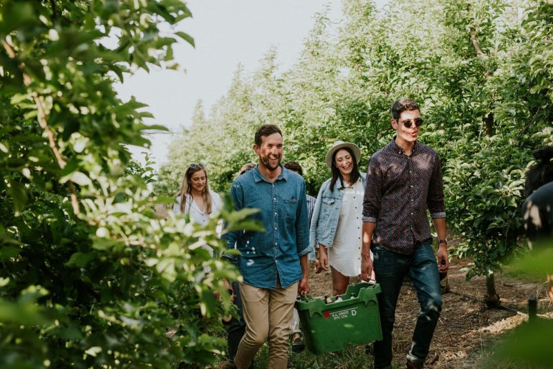 Hills Cider Experience walk through the orchard
