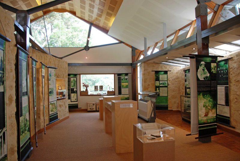 Woods Gallery interior