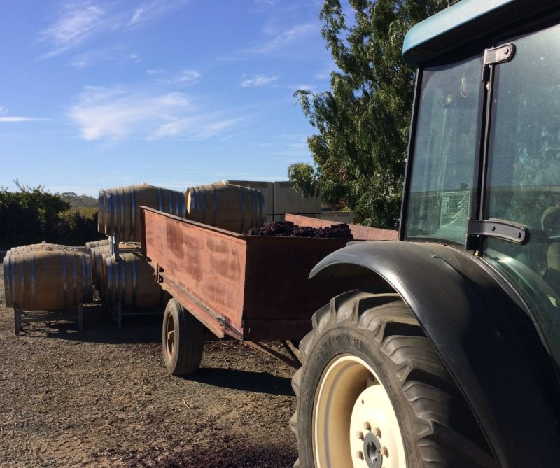 tractor and barrels outside Massena winery