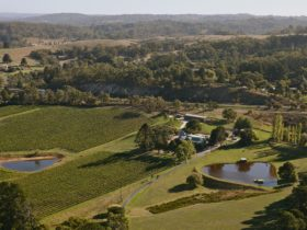 Maximilian's Restaurant and Sidewood Estate Cellar Door