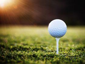 Golf Club Millicent