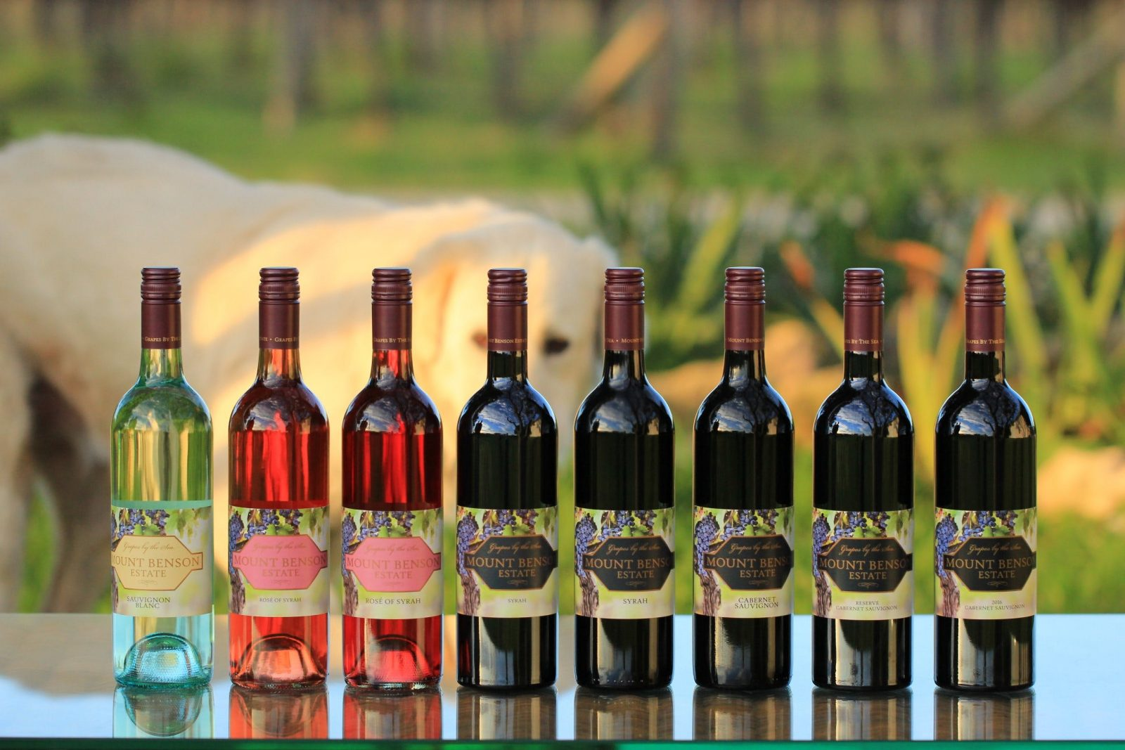5 * Mount Benson Estate (2020 James Halliday Wine Companion)