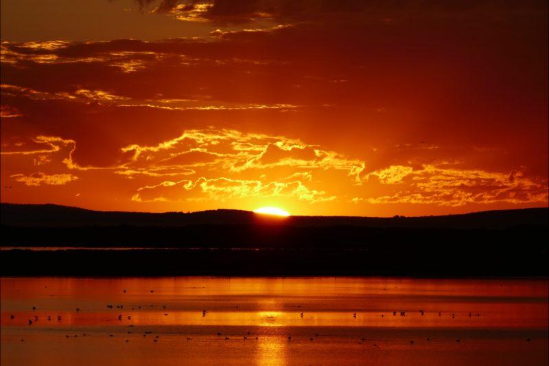 Coorong sunset