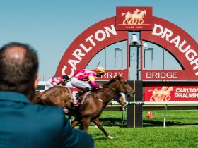 Murray Bridge Race Day