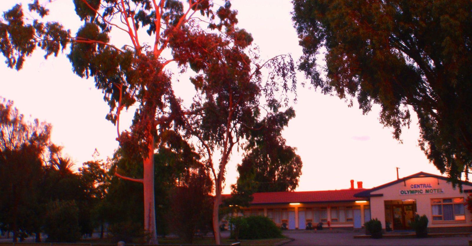 Central Olympic Motel - evening light