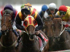Murray Bridge Race Club