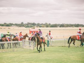 Naracoorte Race Day