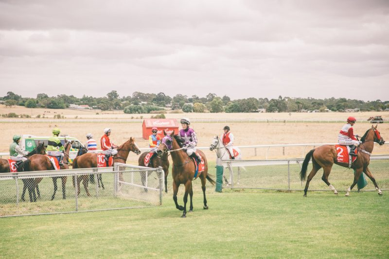 Naracoorte Race Day