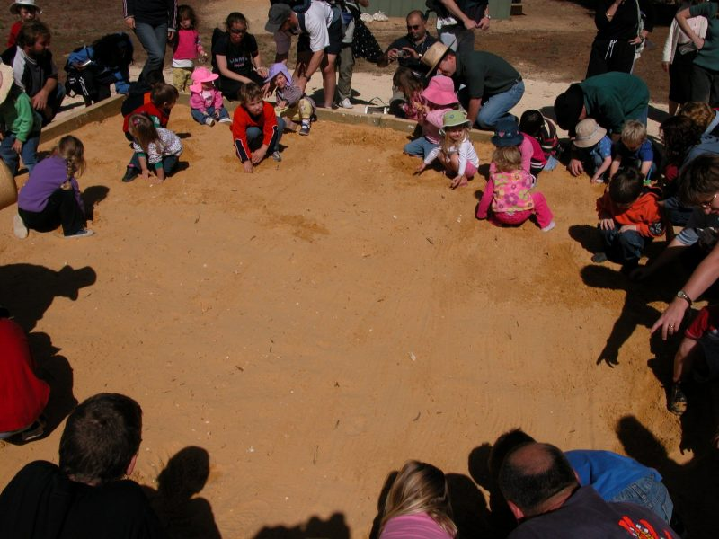 Fossil Dig Sand Pit
