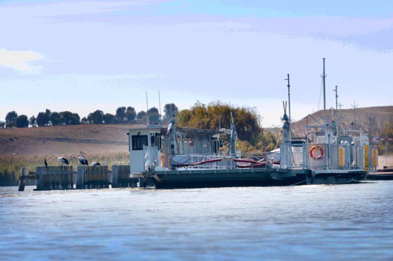 Free ferry at Nattung Narrows, where Lake Alexandrina meets Lake Albert
