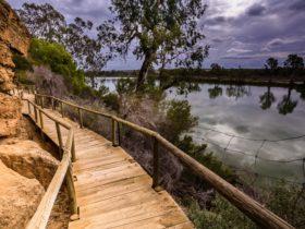 Ngaut Ngaut Conservation Park Boardwalk