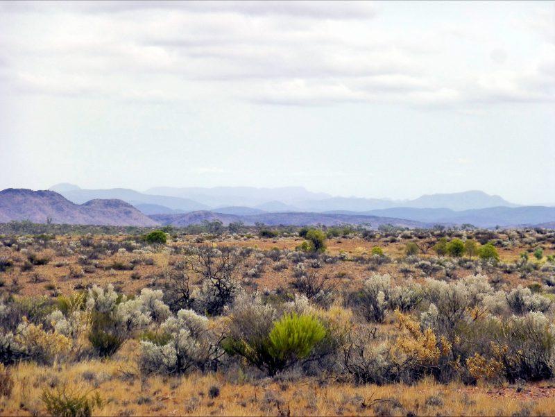 Gammon Ranges