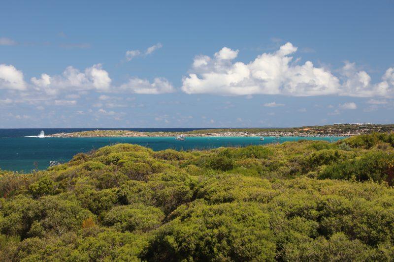 Shows coastal vegetation, the blue ocean and Point Ellen