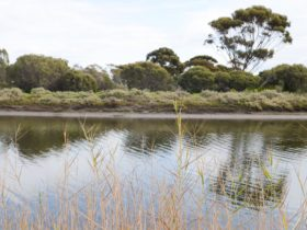 Onkaparinga River Recreation Park