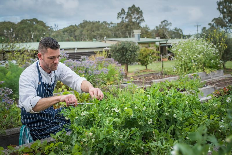 The Currant Shed Garden & Chef McLaren Vale