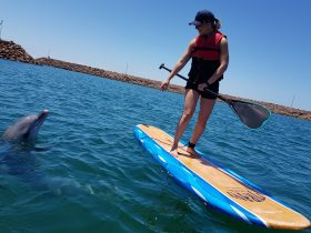 SUP board hire