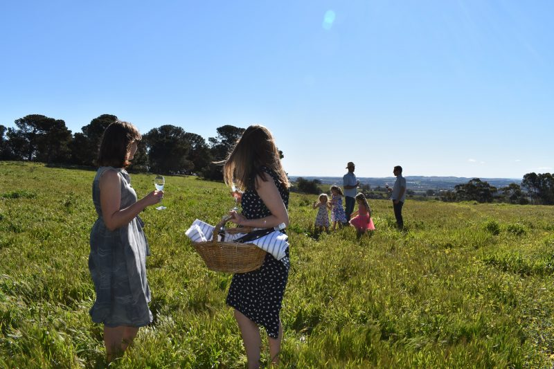 Looking towards Nuriootpa from Paisley Wines