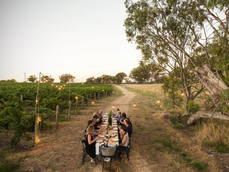 group in vineyard
