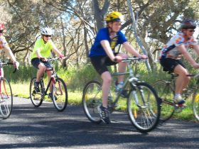 Penola Cycling