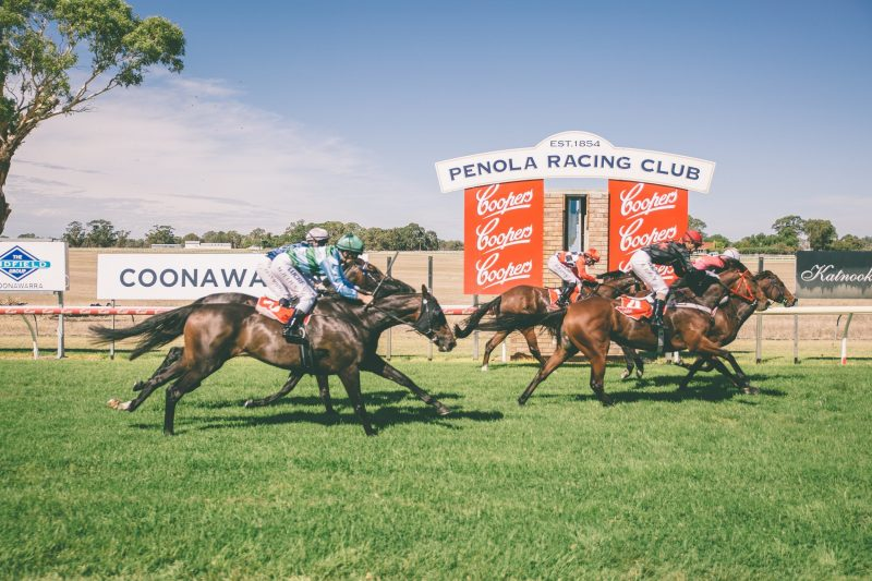 Penola Race Day