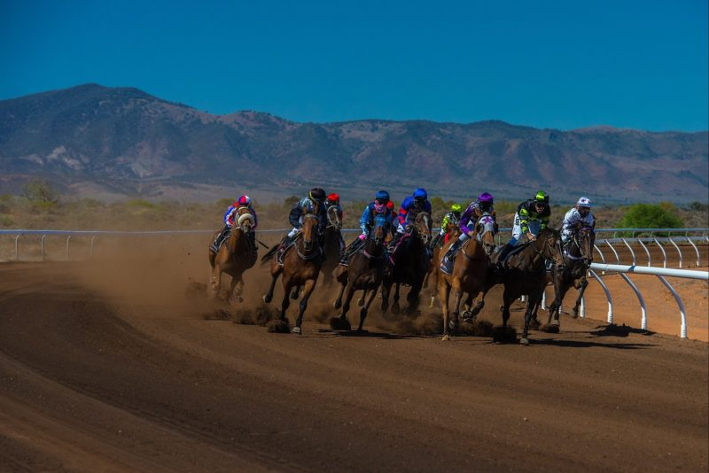 Racing in Port Augusta with the fabulous view of the magnificent Flinders Ranges!