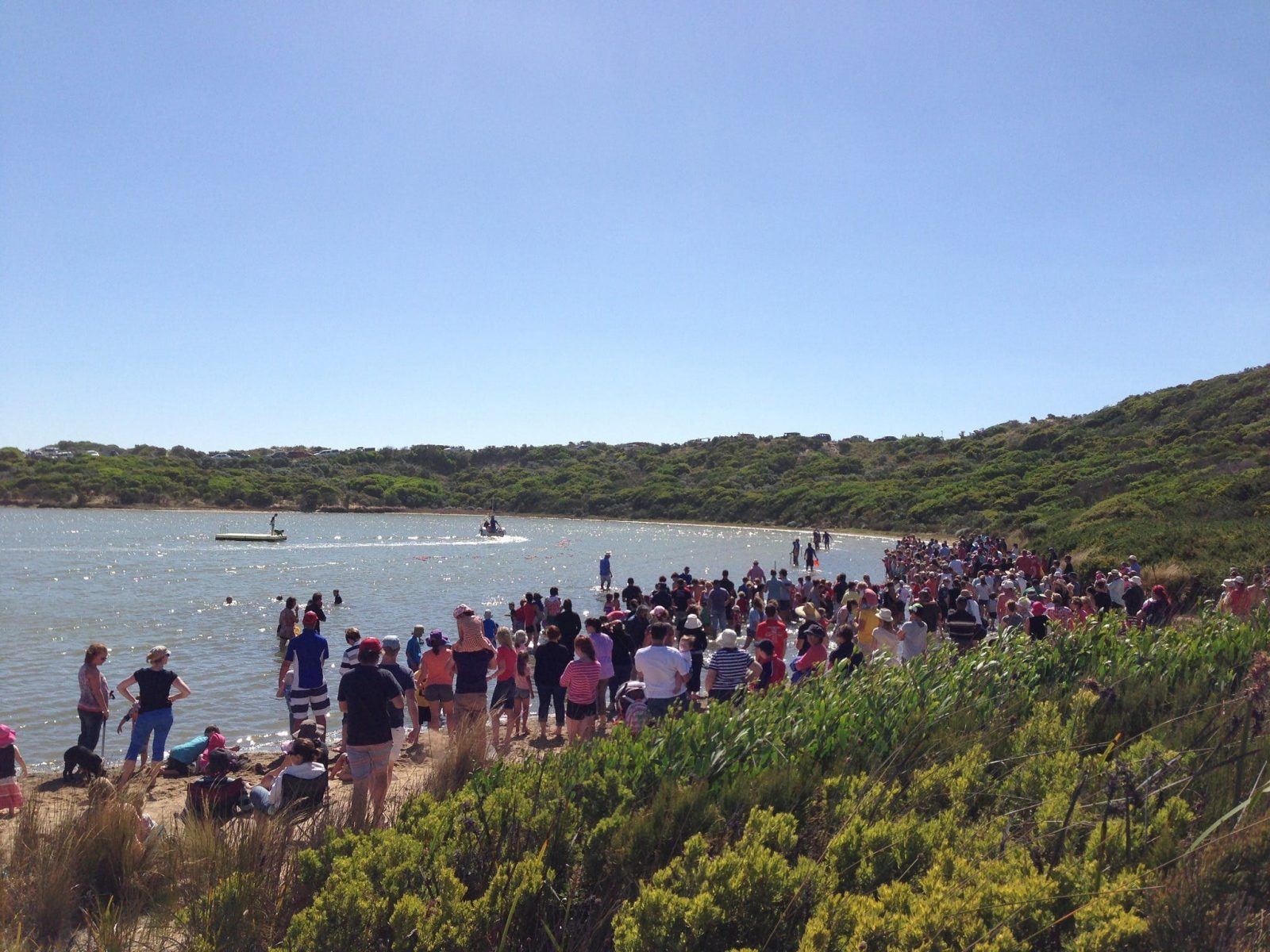 Duck Race Pool of Siloam