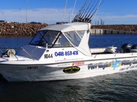The Boat, 7.4 metre Nereus with twin 115HP Yamahas