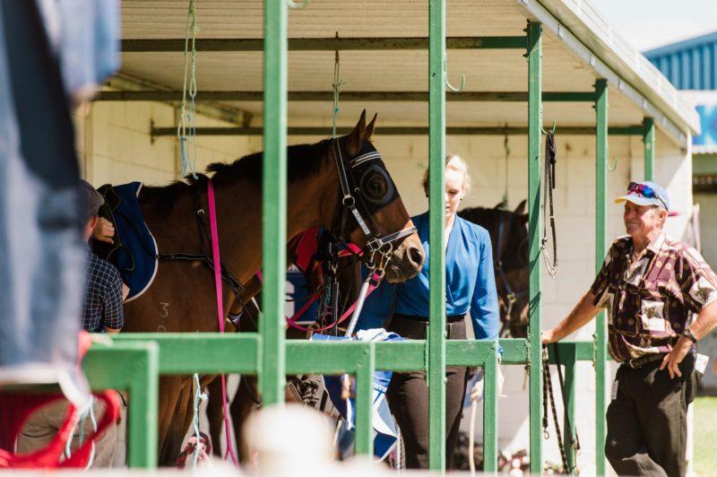 Port Lincoln Race Meet