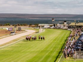 2018 Port Lincoln Cup