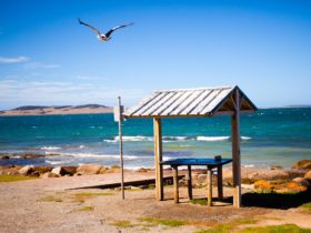 Port Lincoln Tourist Park, Port Lincoln, Eyre Peninsula, South Australia