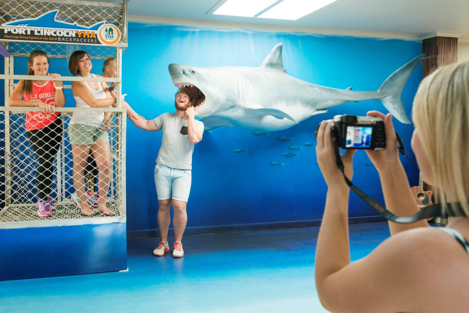 Meet the Great White Shark