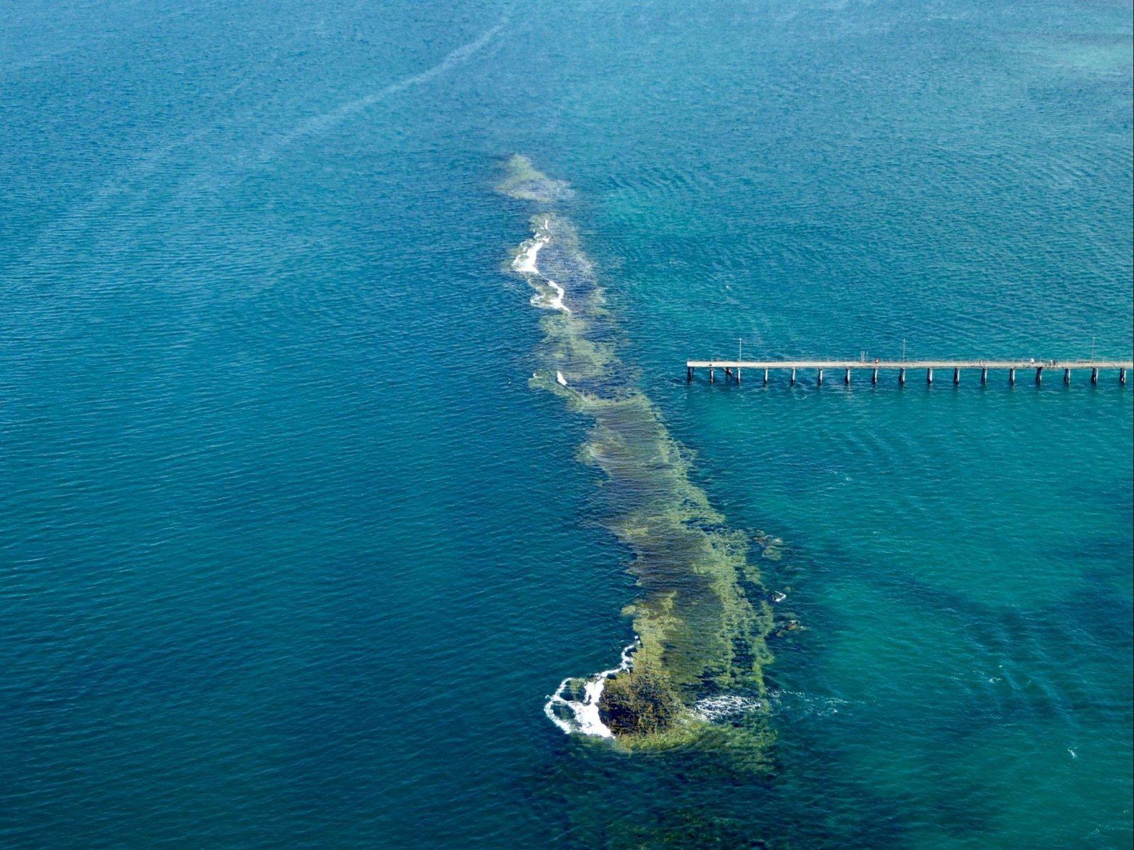 Port Noarlunga Reef Sanctuary Zone