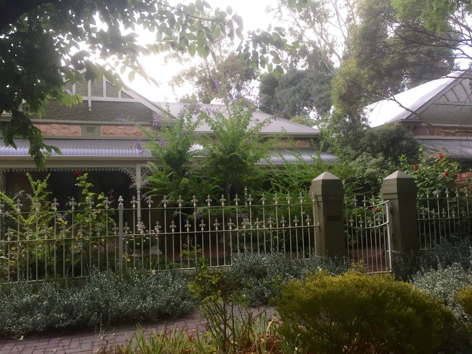 Street view of 8 Catherine St College Park