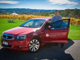 Scott Ninnis and red caprice vehicle in vineyard