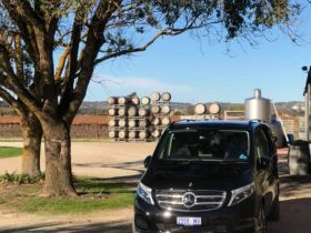 Premium Wine Tours Mercedes