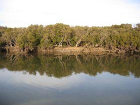 Price, Yorke Peninsula, South Australia