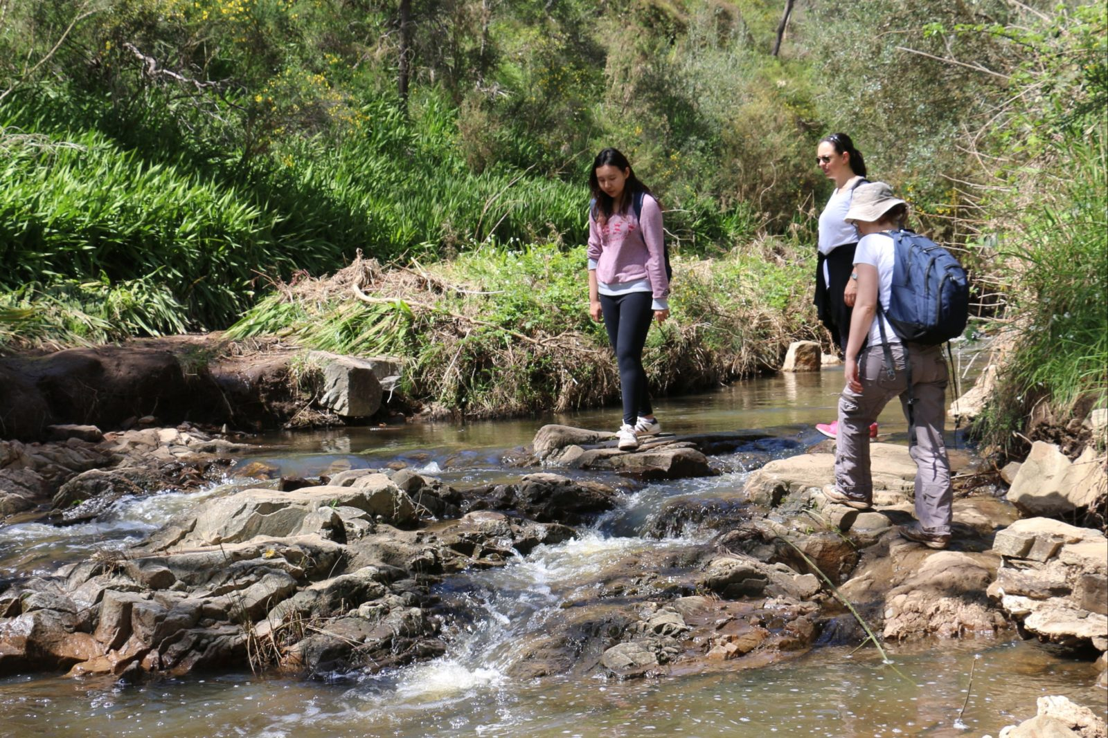 Half day and full day nature based tours in Adelaide South Australia