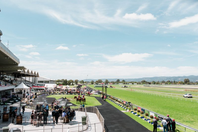 Mounting Yard and Champagne Lawns