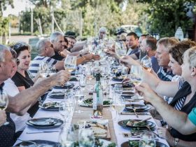 People enjoying food & wine at a long table lunch part of Living the Dream wine making day