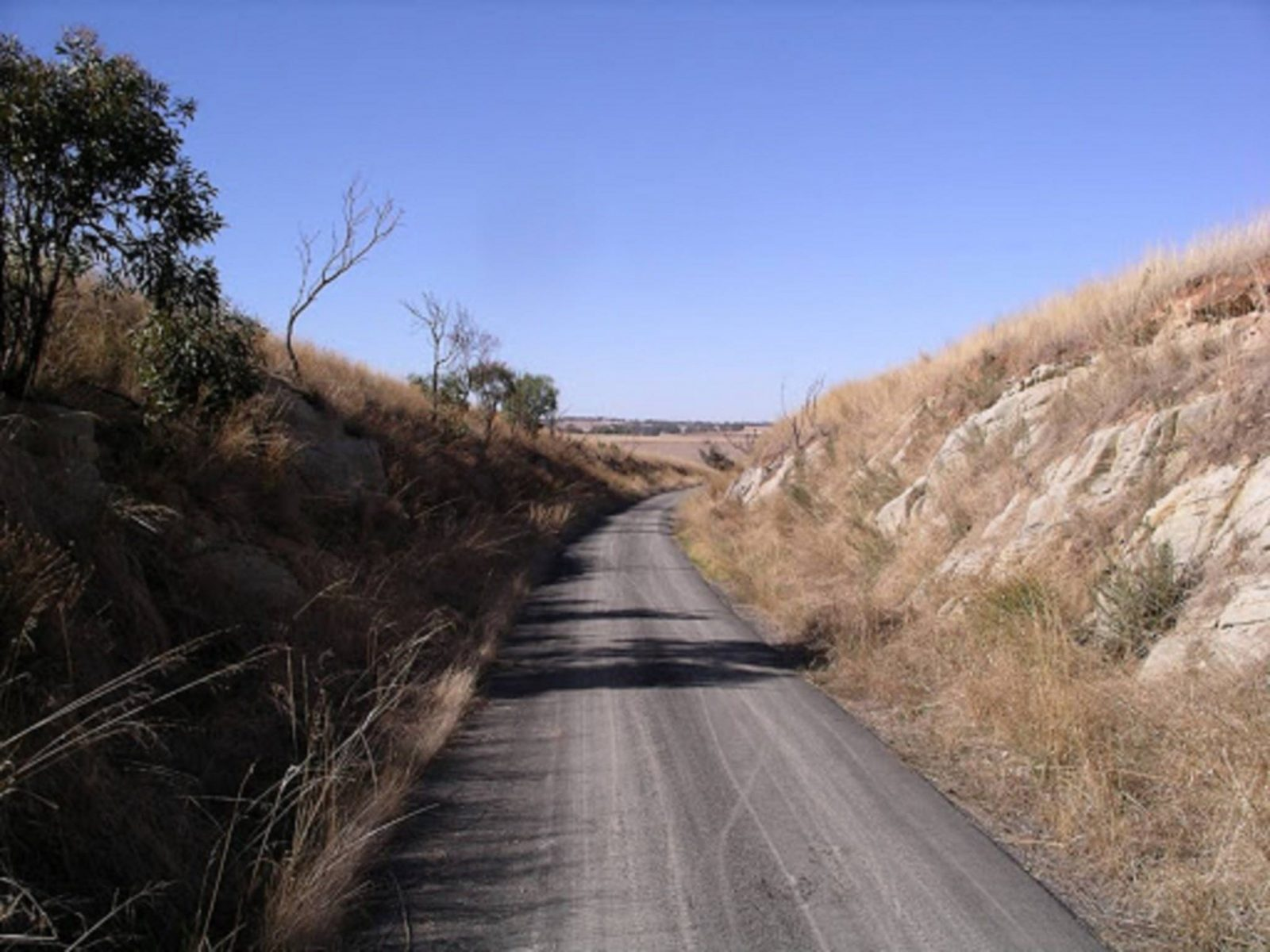 Rattler Trail