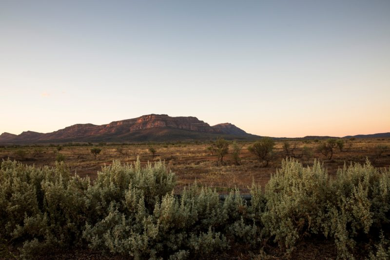 Wilpena Pound from Homestead verandah