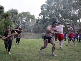 Tal Kin Jeri dance troupe