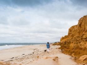 Walking along Redbanks Beach