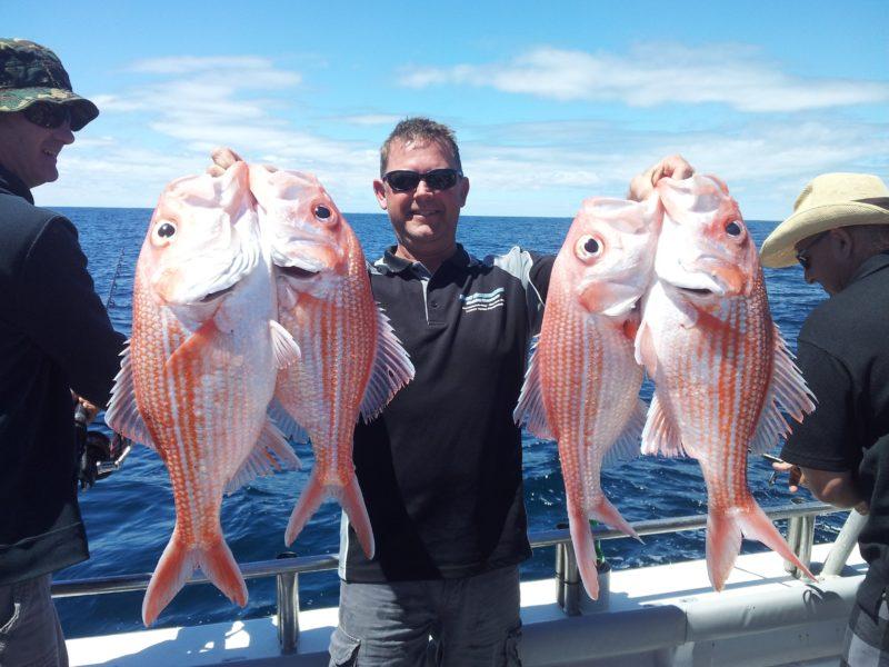 Marion Bay offshore fishing, Yorke Peninsula deep sea fishing