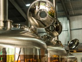 Rehn Bier craft brewery barossa