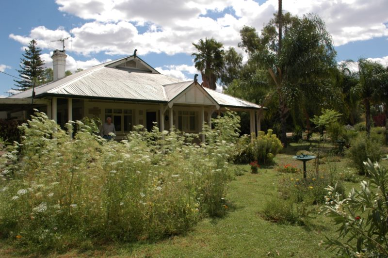 renmark holiday home flowers