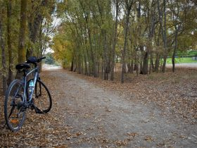 Bike on trail in Autumn